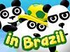 3 Pandas In Brazil